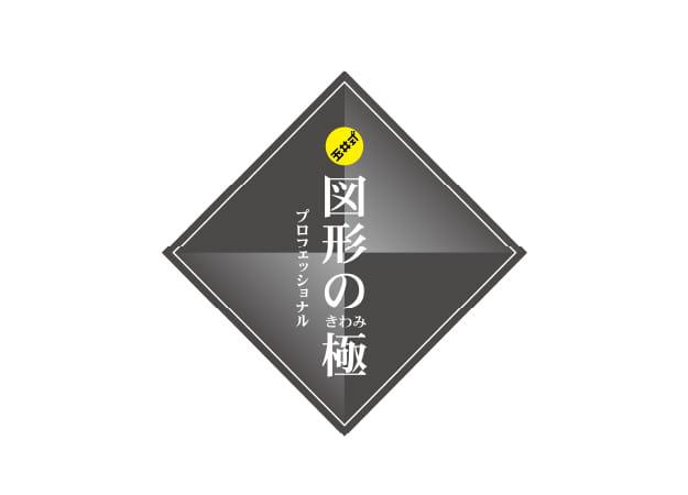 玉井式 図形の極®